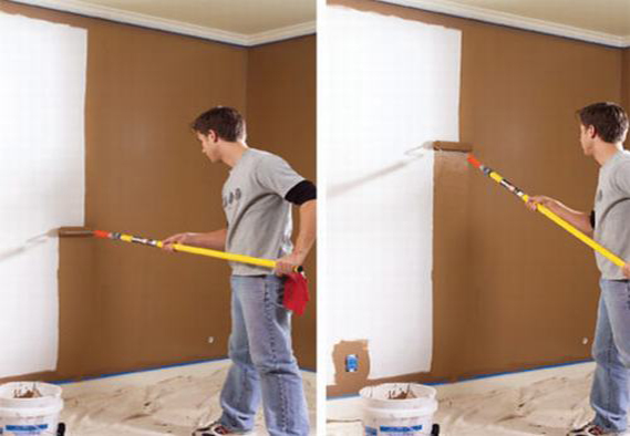 pháp pháp sơn chống nấm mốc
