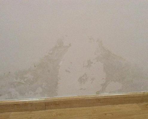 tường thấm nước gây tróc sơn